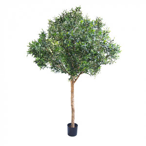 Artificial Giant Olive Tree 2.3m w/13728 Lvs 180 Fr