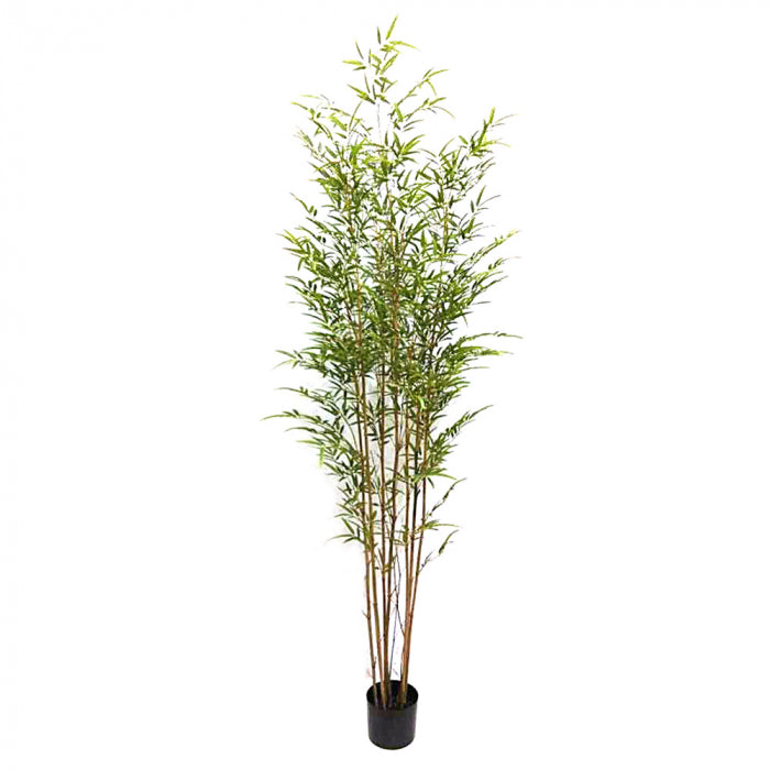 Artificial Bamboo Tree 2.1m - House of Isabella AU