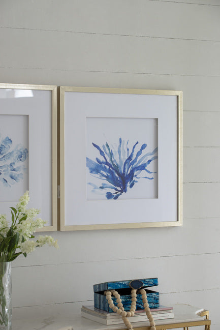 Set of 2 Blue Coral Framed Prints