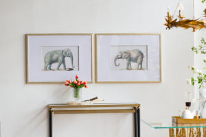 Set of 2 Elephant Framed Prints