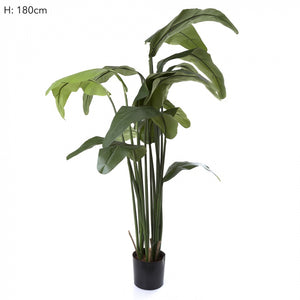 Artificial Travellers Palm 1.5m W/16 Lvs