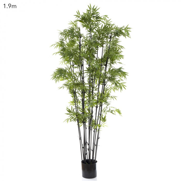 Artificial Japanese Bamboo Black Stem 1.9m - House of Isabella AU