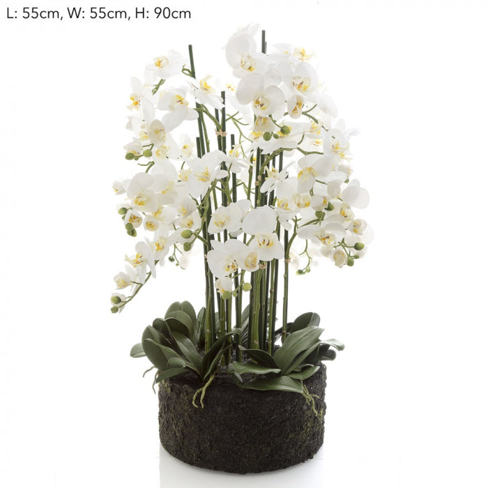 Artificial Orchid in Paper Pot XL White - House of Isabella AU