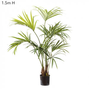 Artificial Kentia Palm W/182 Leaves 1.5m