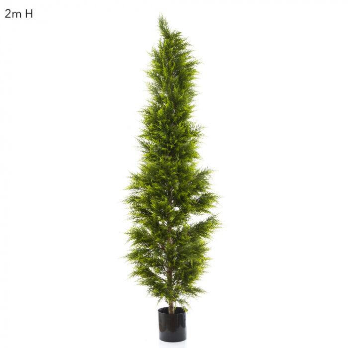 Artificial Cypress Pine 2m - House of Isabella AU