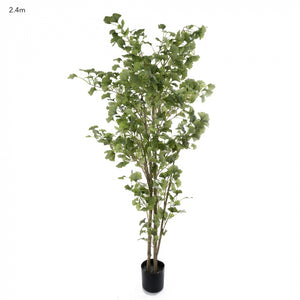 Artificial Ginko Tree 2.4m Potted