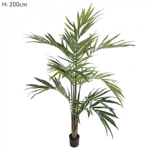 Artificial Kentia Palm Potted 2.5m 216 Lvs