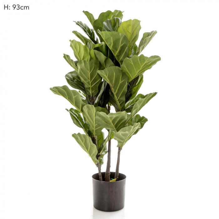Artificial 93cm Fiddle Leaf Tree x 3 w/45 Lvs - House of Isabella AU