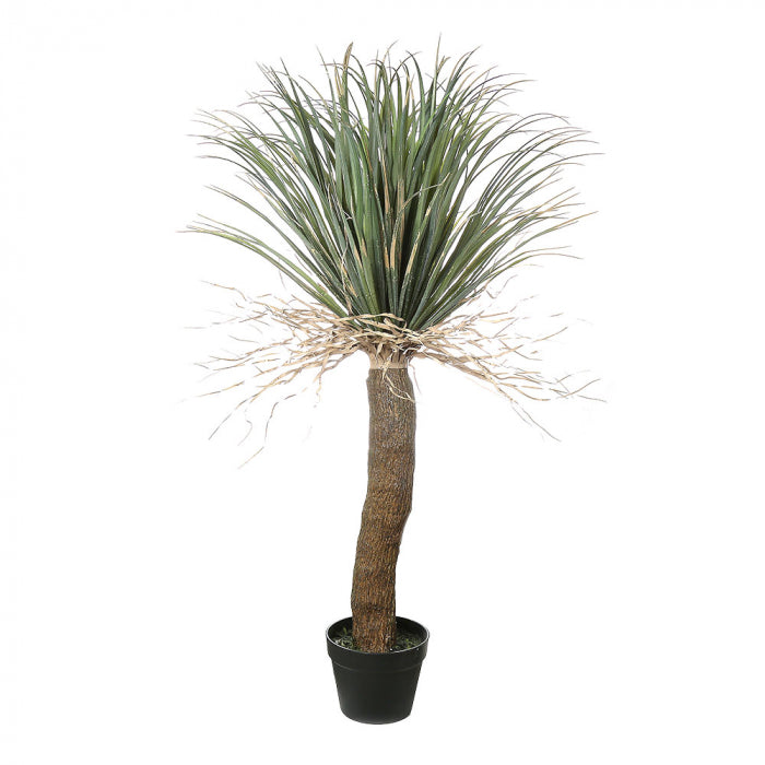 Artificial Grass Tree Small - House of Isabella AU