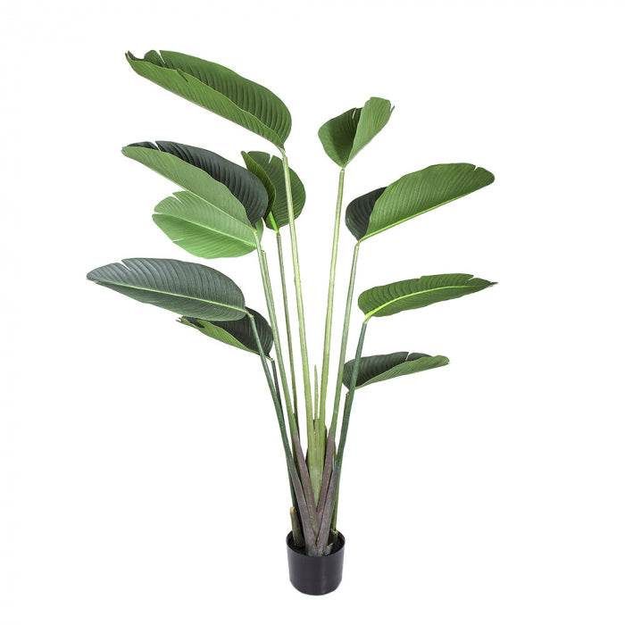 Artificial 150cm Bird of Paradise Faux Tree + Pot - House of Isabella AU