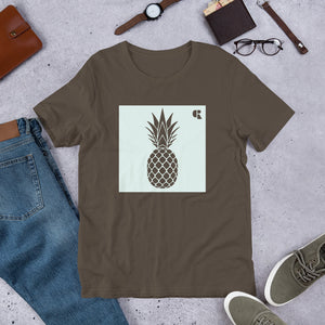 Men's Light Cotton Graphic Tee | Pineapple | Mint - Devious Republic | DVSREP