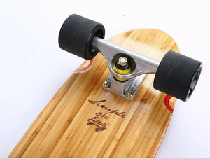 Penny Nickle Style Cruiser Skateboard | LMAI 22''/27"
