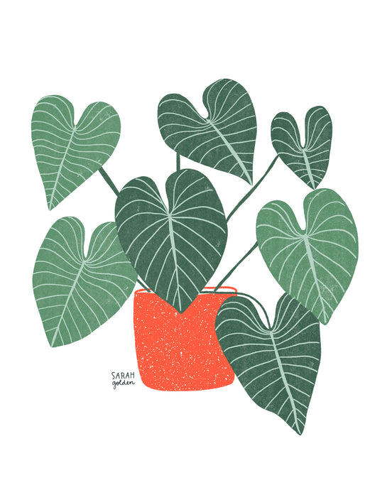 Philodendron no.1 Print