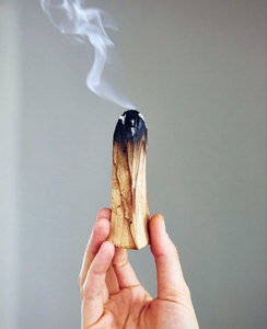 Palo Santo - set of 2 sticks