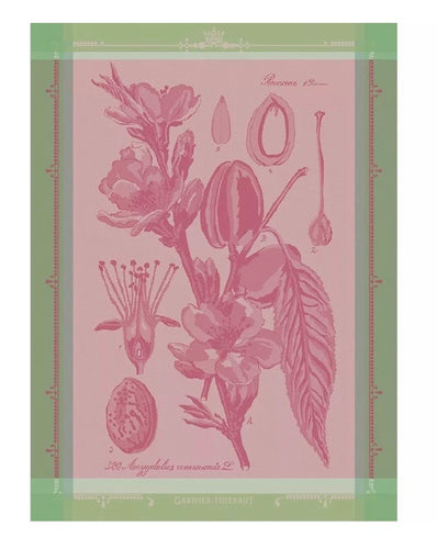 Garnier-Thiebaut French Country Kitchen Dish Towel Fleurs D' Amandier Rose