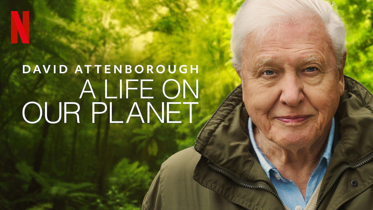 A Life On Our Planet Documentary by David Attenborough