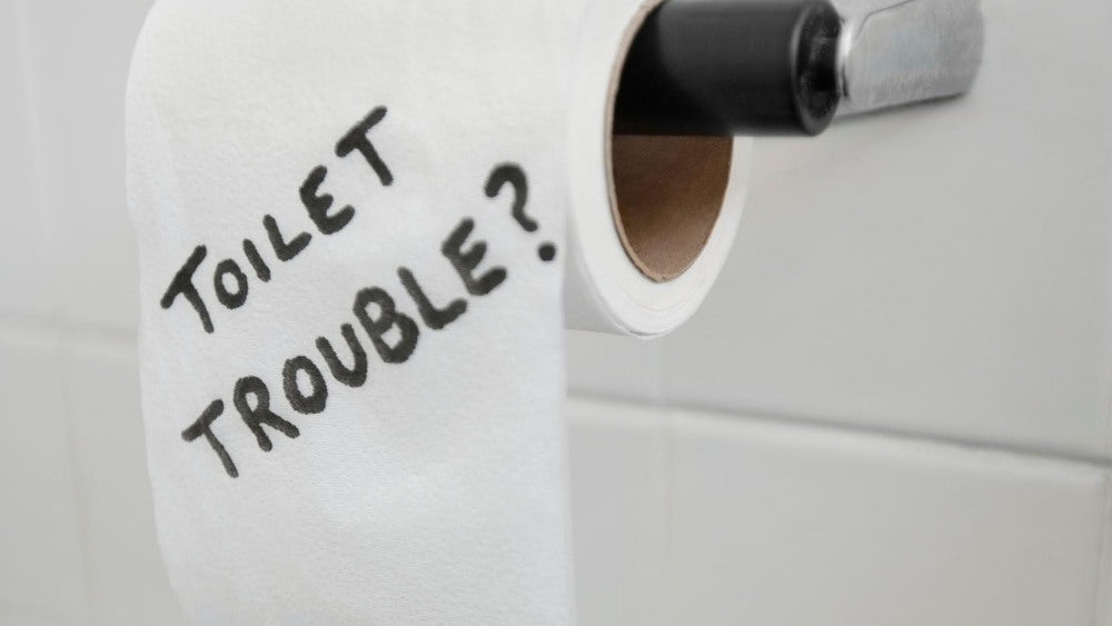 Toilet trouble text in a toilet roll