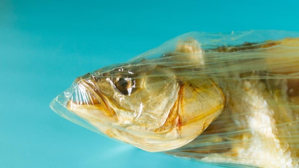 Fish trapped in a plastic bag
