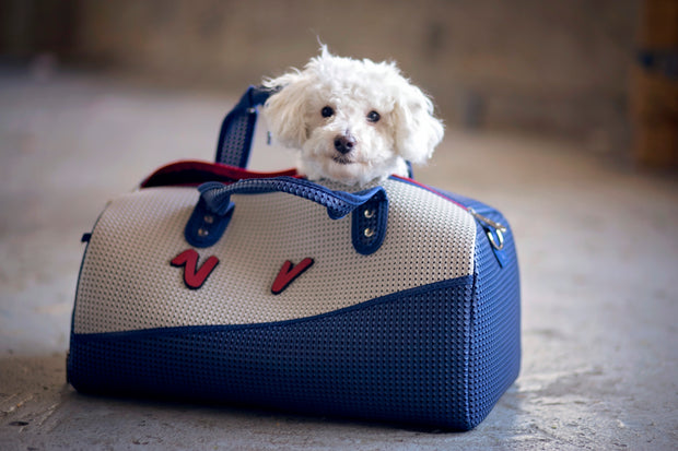 Dog inside the Roma Duffel Bag American Blue.jpg