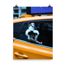 Load image into Gallery viewer, NYC Taxi Tika Poster