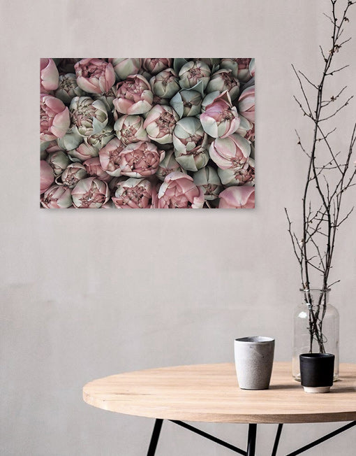 Pastell Roses