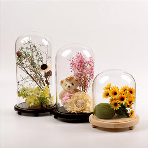 ACEVER_GLASS_DOME_JAR