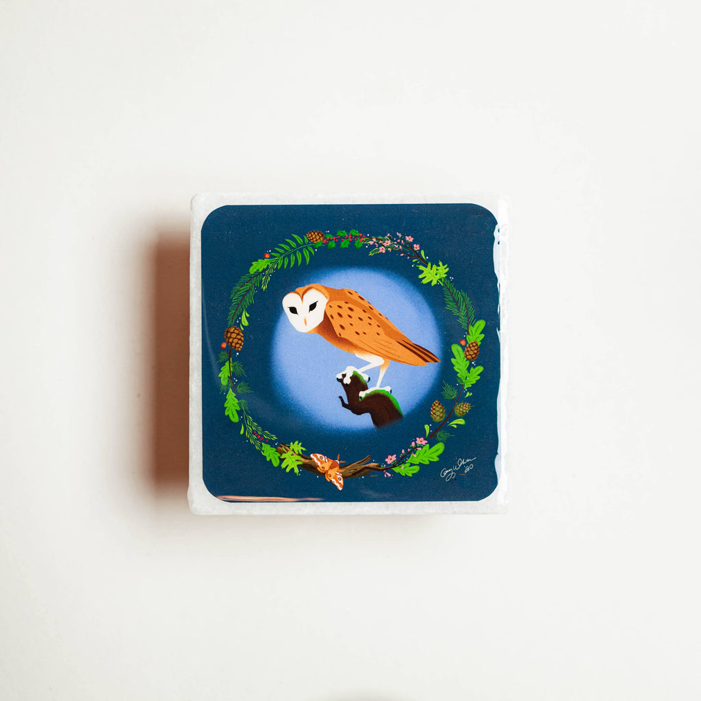 Nature Coaster - Owl