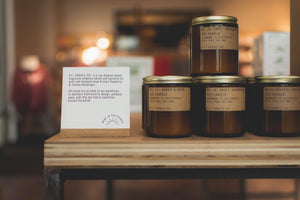 Amber + Moss - Standard Soy Candle 7.2oz