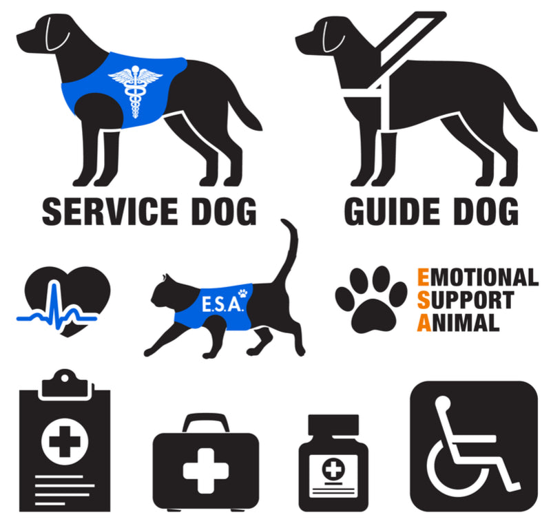 visual chart showing differences between service dog therapy dog and emotional support dog