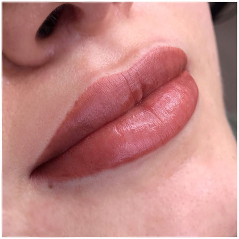 Lip Blush - It is a tattoo on your lips, it will enhance your lips, give the appearance of fuller lips and allowing us to give you more symmetrical lips. With the new technique and colour used, the lips will heal a lot softer and appear more like a lip stain, it will not heal like the old lipstick tattoo look. ⠀⠀