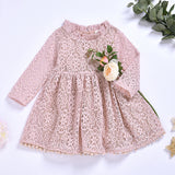 Fashionable Girls Pink Ruffle Collar Mesh Princess Dress