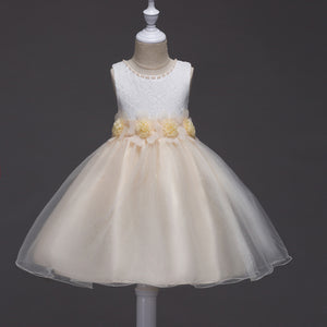 Girls' Prom Dress Mesh Tutu Flower Princess Dress Beaded Lace Dress