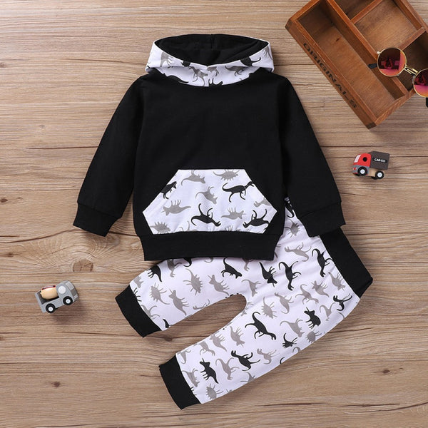 Baby Boys Dinosaur Long sleeve Top & Pants Wholesale Clothes For Kids
