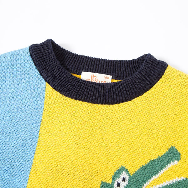 Boys Crocodile & Crying face Pattern Long Sleeves Knitting Sweater Boy Clothes Wholesale
