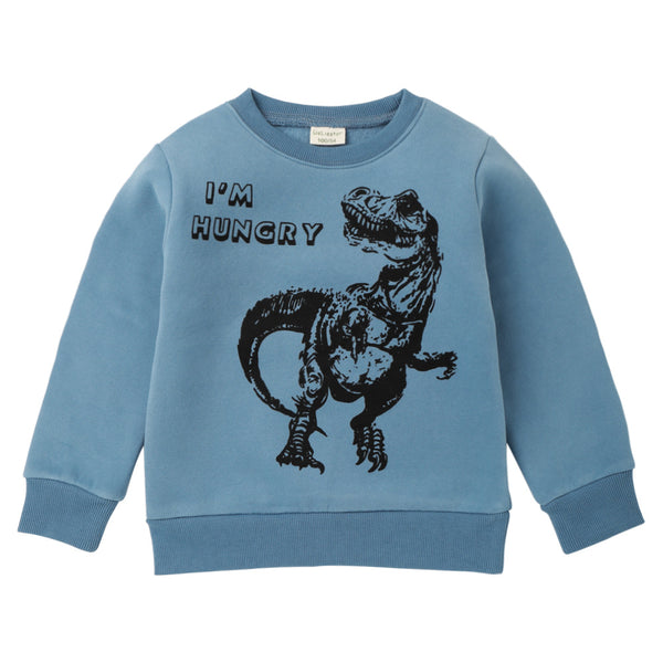 Boys Dinosaur Letter Printed Dinosaur Long Sleeve Tops Wholesale