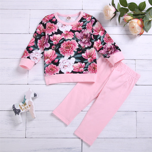 Toddler Girs Floral Printed Long Sleeve Top & Pants Toddler Girls Wholesale