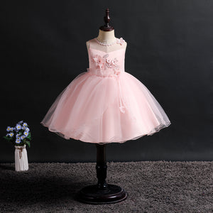 Girls Party Dress Lace Mesh Dress Sleeveless Dress  Performance Dress