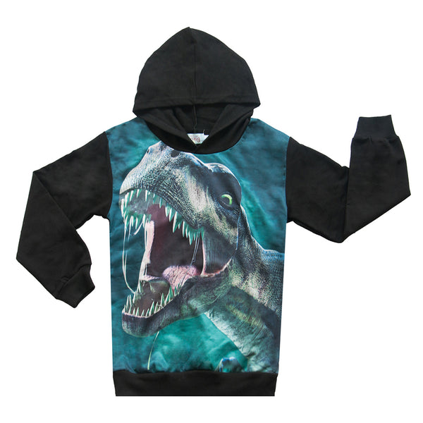 Boys Long Sleeve Dinosaur Hooded Tops