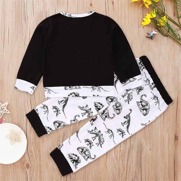 Boys Long Sleeve Dinosaur Letter Printed T-shirt & Pants Kids Wear Wholesale
