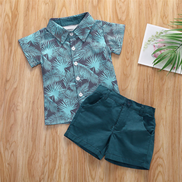 Toddler Boys Short Sleeve Plant Print Lapel Top & Shorts Kids Wholesale Clothing