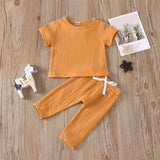 Baby Unisex Solid Color Short Sleeve Top & Pants Babywear Wholesale