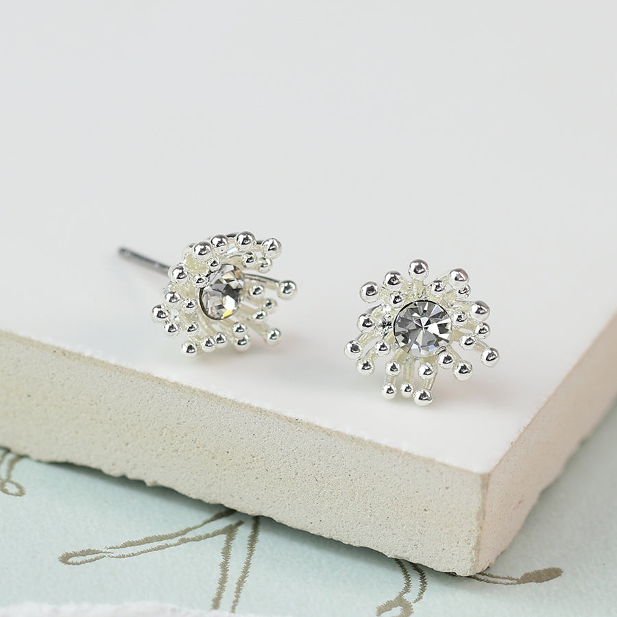 Cluster Earrings With Crystal