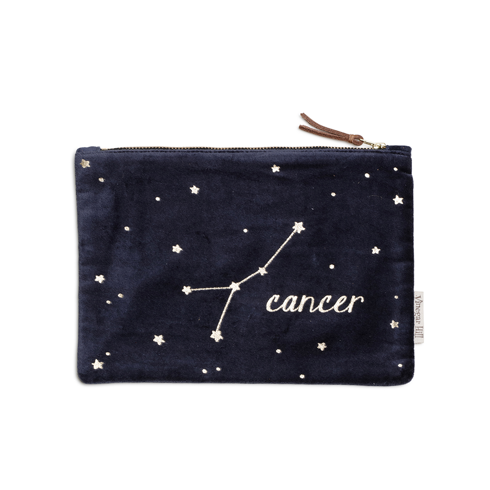 Blue velvet Cancer wash bag with leather trim
