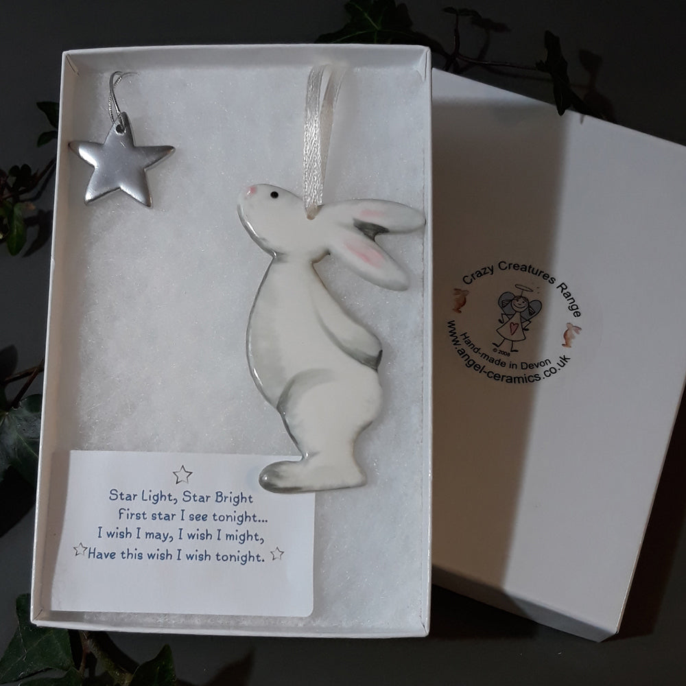 Boxed Bunny & Star Decoration