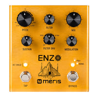 Meris Enzo Synth Guitar Pedal Multi Voice
