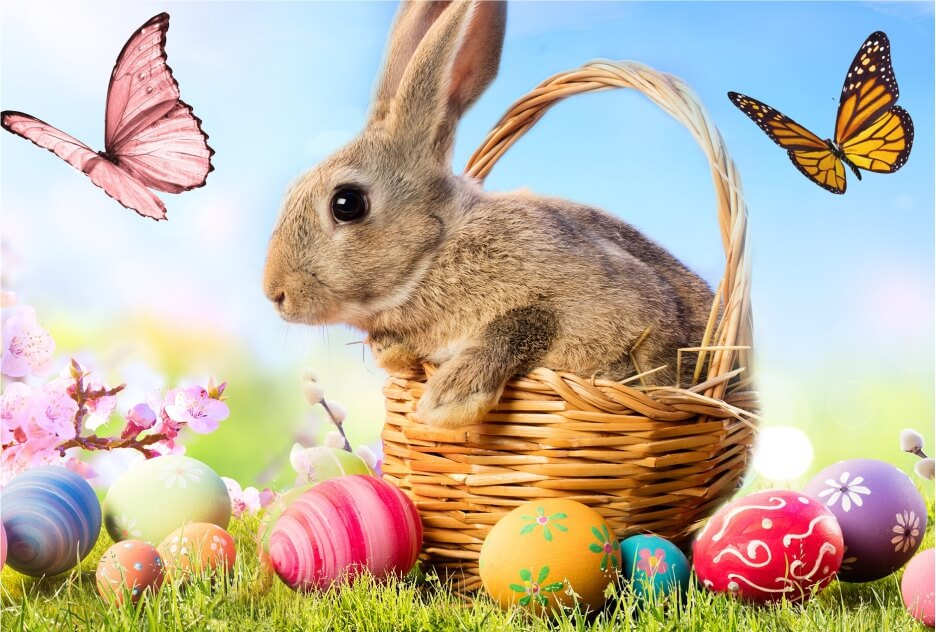 Easter bunny in basket with eggs and butterflys blue sky puzzle jigsaw micropuzzle