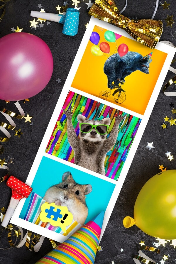 Bear Hamster Raccoon Party Animal Photo Booth MicroPuzzles micro mini jigsaw puzzle