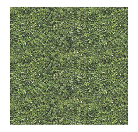 Boxwood Paper Charger/ Placemat- Set of 24