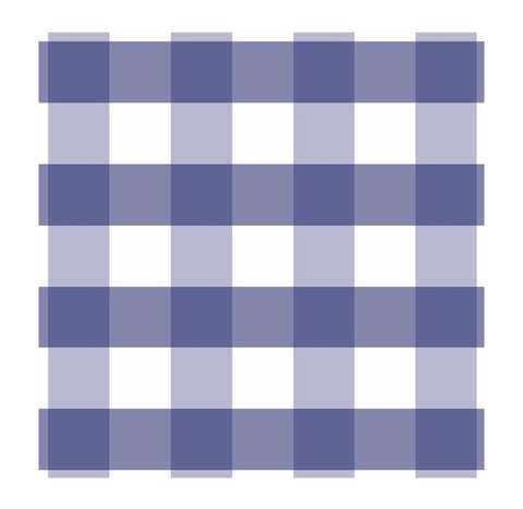 Baby Blue Plaid Paper Charger/ Placemat- Set of 30