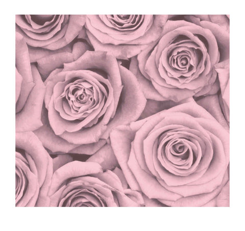 Blush Roses Paper Charger/Placemat- Set of 30